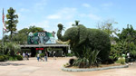 san diego zoo