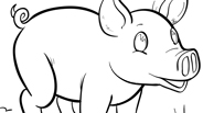 Baby Pig Coloring Page
