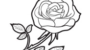 Flowers Rose Coloring Page