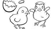 Chicks: Easter Coloring Page
