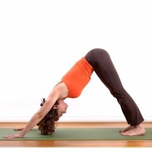 6 yoga poses for beginners  grandparents