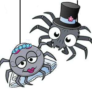 Halloween Spider Jokes.Halloween Jokes For Kids Considerable