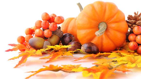 narrative essays on thanksgiving