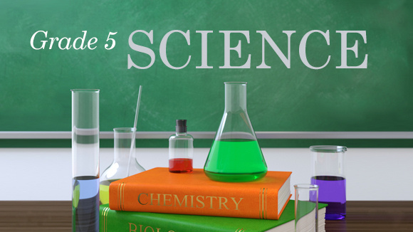 Grade Five Science on Fifth Grade Science Of Natural